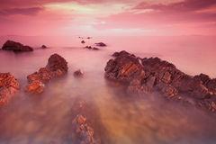 Rocky beach at sunset. Royalty Free Stock Images