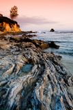 Rocky beach at sunset. Wavy rock formations at the beach at sunset with a lonely tree on the cliff in the background Royalty Free Stock Image