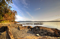 Rocky beach at sunset. A rocky beach at sunset on the west coast of Canada Stock Images