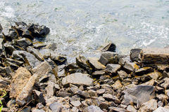 Rocky beach Royalty Free Stock Image