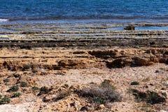 Rocky beach of Torrevieja. Costa Blanca. Spain Stock Image