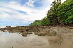 Rocky beach and trees Costa Rica. Rocky beach and trees montezuma Costa Rica Stock Photo