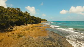 Rocky beach on a tropical island. Philippines,Siargao. Aerial view Rocky beach with palm trees, blue water on a tropical island. Viewpoint along stony beach stock footage