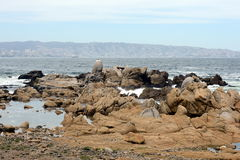 Rocky beach in Vina del Mar. Royalty Free Stock Photo