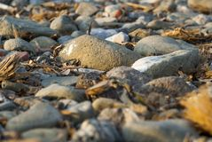 Rocky beach on a warm day. Rocky beach taken during a warm day, smoothed by the sea Royalty Free Stock Photo