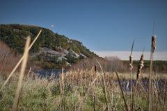 Rocky Bluff met Cattails royalty-vrije stock afbeelding