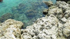 Rocky bottom of the ocean. Rocky bottom of water in the Atlantic Ocean stock photos