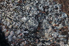 Rocky bottom stream. Photo gray smooth stones of different sizes, which are under the clear water stream with ripples on the surface Royalty Free Stock Images
