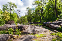 Rocky boulders and trees stock images