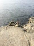 rocky brzegu Fotografia Stock