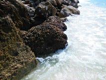 rocky brzegu zdjęcie stock