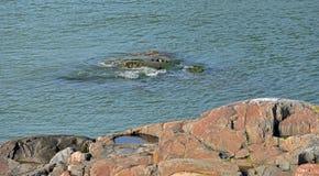 rocky brzegu Czerwony granit Suomenlinna Sveaborg forteca Helsink Fotografia Royalty Free