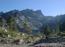 Rocky buttes. The upper heights of the Sierra Buttes Royalty Free Stock Photos