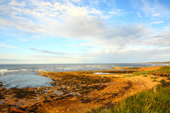 Rocky Cambo Beach in Scotland Royalty Free Stock Images