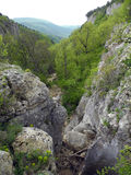 Rocky canyon in the mountains of Crimea. In spring day stock photos