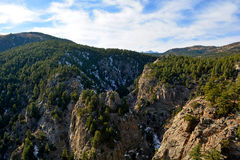 Rocky Canyon in the Mountains with Pine Trees.  Royalty Free Stock Image