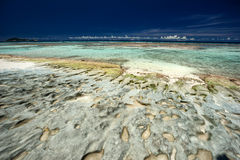 Rocky Caribbean shoreline Royalty Free Stock Photo