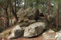 Rocky chaos in Fontainebleau forest. Cassepot rock in Fontainebleau forest Stock Image