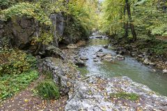 Rocky cliff along a stream in a gorge of colorful autumn foliage. Stock Images