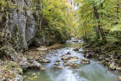 Rocky cliff along a stream in a gorge of colorful autumn foliage. Royalty Free Stock Image