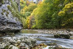Rocky cliff along a stream in a gorge of colorful autumn foliage. Stock Image