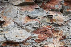 Rocky cliff closeup. Closeup of a cliff on the Yorkshire coast, England Stock Photography