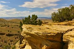 Rocky cliff in the desert with small bushes on top Royalty Free Stock Photos