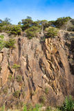 Rocky cliff face. With bush on top at New Zealand coast royalty free stock photos