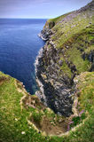 Rocky cliff with grass and wild flowers above the sea Royalty Free Stock Photography