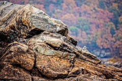 Rocky cliff at Great Falls National Park Stock Photography