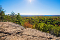A Rocky Cliff High Above the Tree Tops Royalty Free Stock Images