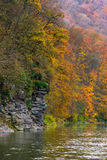 Rocky cliff of mountain river background. In autumn. colorful forest foliage reflects on a rippled water surface Stock Photos