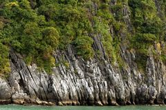Rocky cliff and tree Royalty Free Stock Images