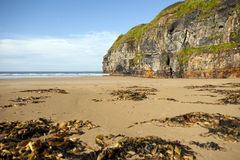 Rocky cliffs of Ballybunion on the wild atlantic way Royalty Free Stock Photo