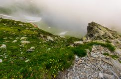 Rocky cliffs in foggy weather. Wild flowers among the grassy slopes. dramatic view from the hill Stock Photography