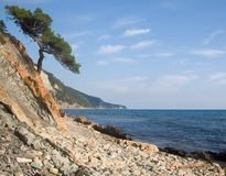 Rocky coast of Black sea Stock Photos