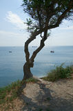 Rocky coast Black sea Royalty Free Stock Images
