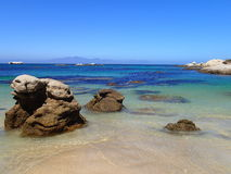Rocky Coast Cape Town Royalty Free Stock Images