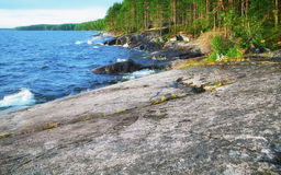Rocky Coast do lago onega Fotografia de Stock Royalty Free