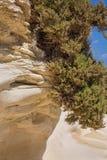 Rocky coast formed by sandy sediments. Rocky coast formed by sandy sediments and sandstone cliffs. Marsaskala on the coast of the Malta island in the Stock Photography