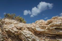 Rocky coast formed by sandy sediments. Rocky coast formed by sandy sediments and sandstone cliffs. Marsaskala on the coast of the Malta island in the Royalty Free Stock Photography