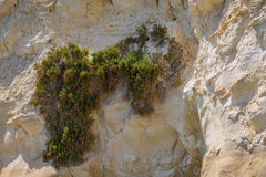Rocky coast formed by sandy sediments. Rocky coast formed by sandy sediments and sandstone cliffs. Marsaskala on the coast of the Malta island in the Stock Image