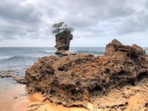 Rocky coast and island Stock Photography