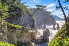 Rocky Coast of Japan Royalty Free Stock Image