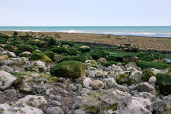Rocky coast at low tide in Northern France Stock Images