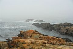 Rocky coast in Maine Stock Photo