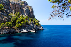 Rocky coast on Mallorca. Rocky coast line on Mallorca, Spain (Mediterranean Sea), cliff rising from the water with some trees on it Royalty Free Stock Photo