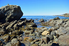 Rocky coast at Moss Street Cove, Laguna Beach, California Stock Images