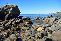 Rocky coast at Moss Street Cove, Laguna Beach, California Stock Images
