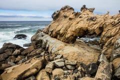 Rocky Coast of Northern California Stock Image